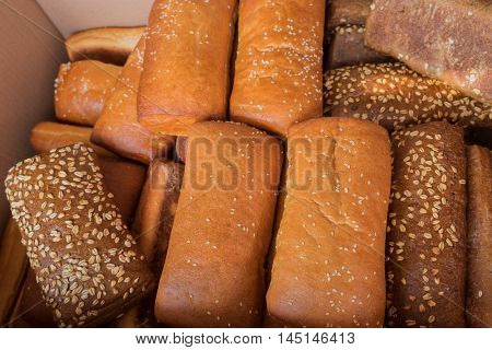 Fresh sesame ciabatta at the city market