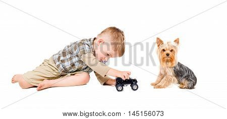 Kid playing toy car together with Yorkshire terrier isolated on white background