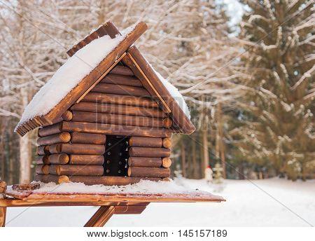Wooden feeder for birds in winter forest