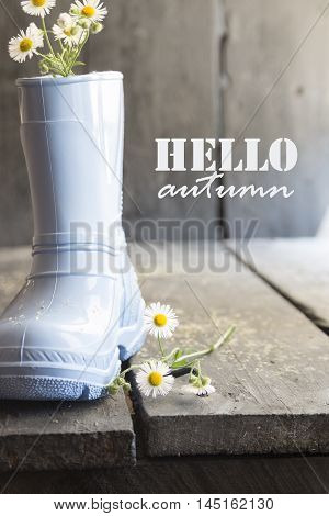 Daisy and boots on a vintage background and text hello autumn