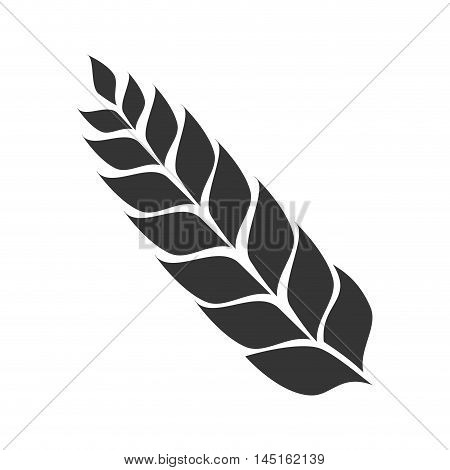icon leaf malt beer isolated vector illustration eps 10