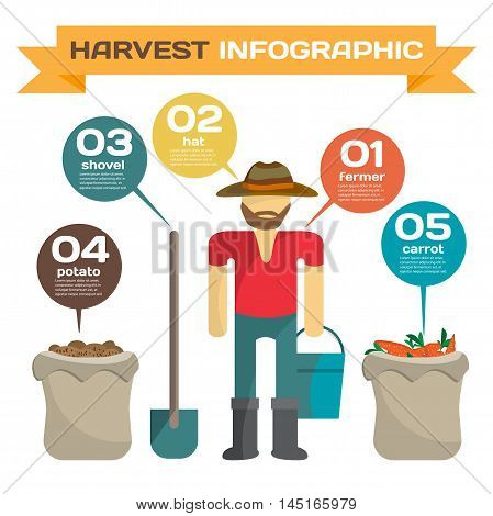 Infographic set man harvesting potato in the field cartoon flat vector illustration. Manual labor shovel bucket sack bush potatoes and carrot