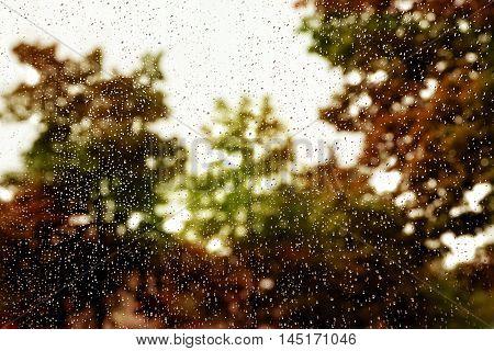 Rain drops on glass window. Autumnal atmosphere