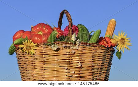 healthy and natural Supplies. fresh and delicious food from the garden branch