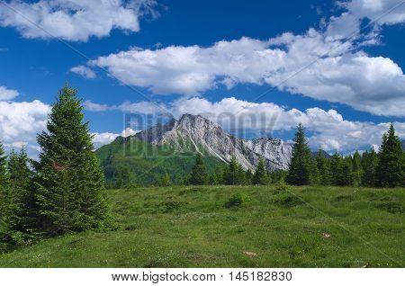Summer view of the Alps near Sappada, Veneto, Italy
