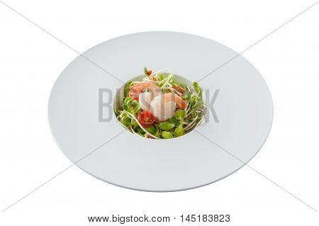 Front view of Modern style sunflower sprout salad with shrimp in ceramic dish isolated on white background