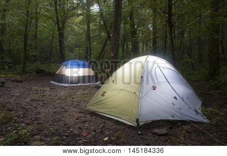 Two nylon tents put up in a dark North Carolina forest