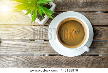 White coffee cup and flowerpot on wooden table.