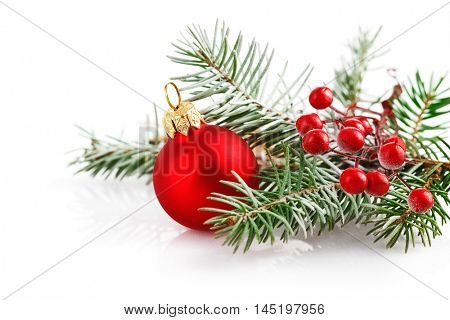 Christmas red ball with branch firtree in snow. Isolated on white background