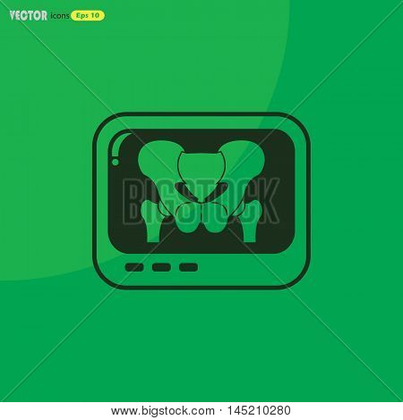 X-rays of the pelvis  Vector icon for web and mobile. Medical collection