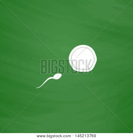 Egg and spermatozoon. Flat Icon. Imitation draw with white chalk on green chalkboard. Flat Pictogram and School board background. Vector illustration symbol