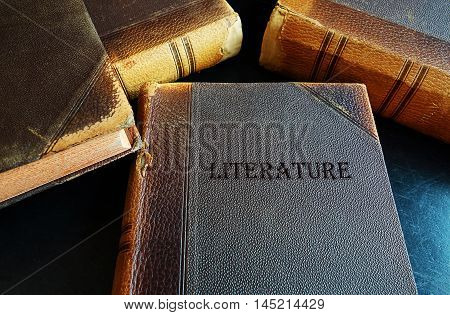Old Literature books with weathered leather covers