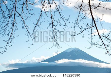 Beautiful view of Mount Fuji through branches of trees in autumn This mountain is a famous natural landmark of Japan