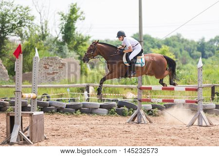 Volgograd, Russia - June 19, 2016: A Horse With A Rider During The Execution Of A Jump Over A Hurdle