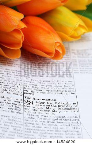 Escritura de Pascua