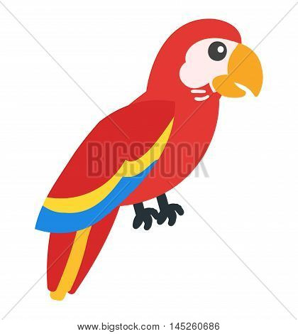 Cartoon parrot wild animal bird. Tropical parrot feather zoo bird, tropical fauna parrot flying ara. Cartoon exotic parrot bird vector illustration.