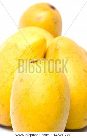 Champagne Mangos In Plastic Box White Background
