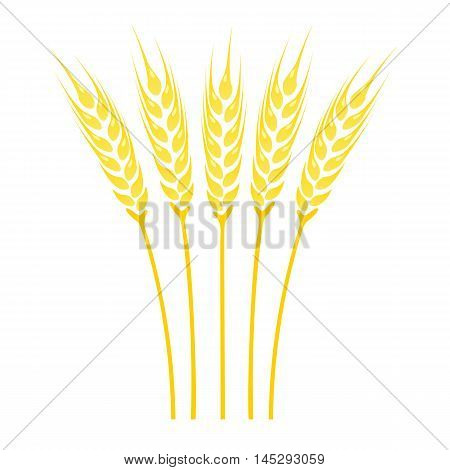 Ears of Wheat icon. Crop symbol isolated on white background. Vector illustration.