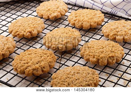 freshly baked typically scottish oatmeal biscuit on a cooling rack
