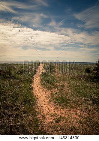 Sandy path leading to a beach on Prince Edward island, Canada.