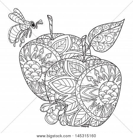 Honey apple doodle and bees.Hand drawn vector illustration. Sketch for tattoo adult coloring anti stress book. Zen art collection boho style.
