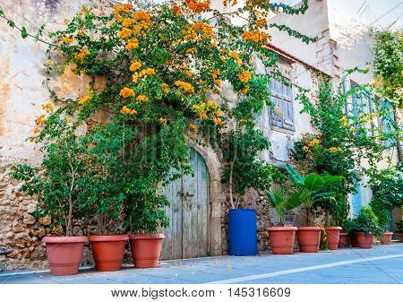 The scenic green plants and flowers in pots create the tiny garden in front of the old house Rethymno Crete Greece.