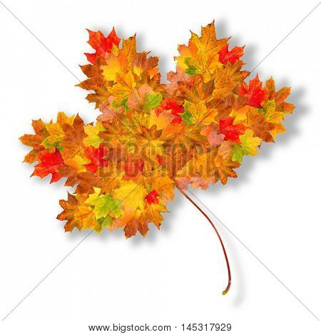 Autumn leaf shape made up of smaller autumn leaves on a white background with a drop shadow