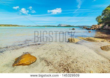 rocks in Lu Impostu foreshore in Sardinia