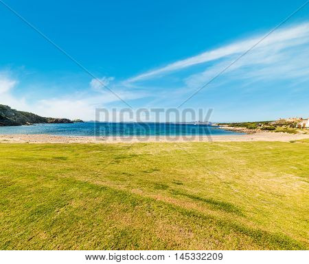 green grass by the sea in Sardinia Italy