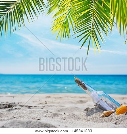 bottle with message on a tropical beach under a palm tree