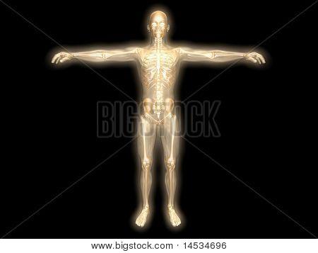 Energy Body.
