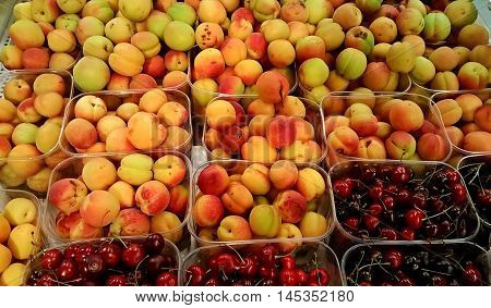 Multi-colored apricots and cherries in plastic trays