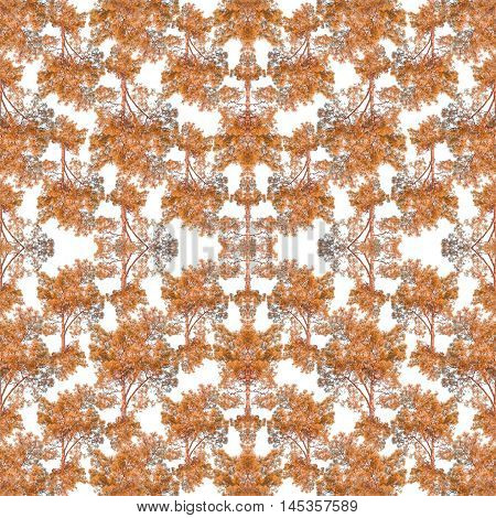 Digital photo and manipulation technique nature collage motif seamless pattern mosaic in orange and white tones