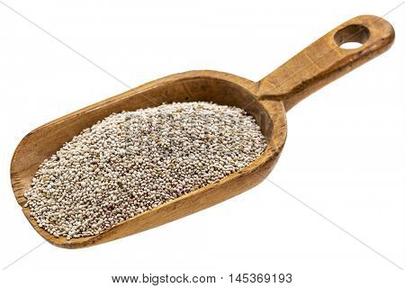 white chia seeds on a rustic wooden scoop, isolated on white