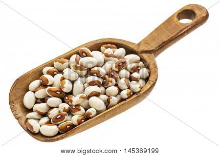 yellow eye beans on a rustic wooden scoop, isolated on white