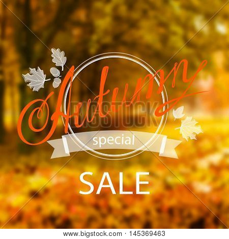 Vector inscription Autumn Sale with framing and leaves, on the realistic blur background with park and orange trees