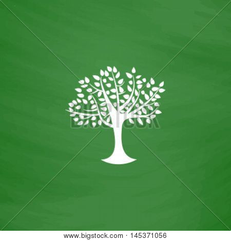 Maple tree Simple line vector button. Imitation draw with white chalk on blackboard. Flat Pictogram and School board background. Outine illustration icon