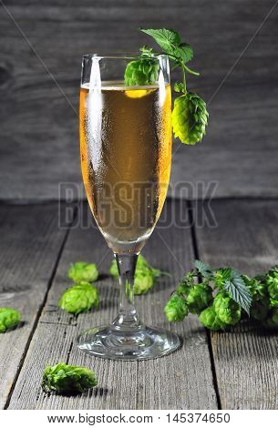 Glass of ice cold beer and green hops