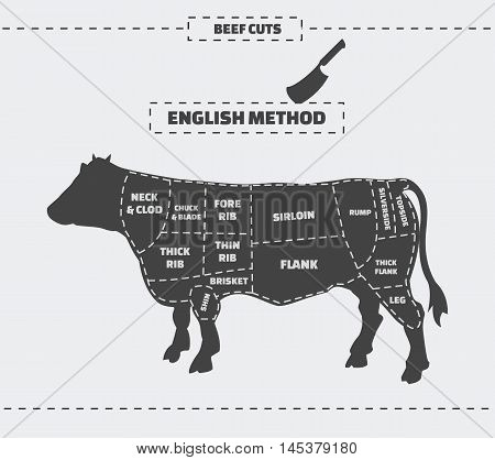 Cuts of beef. English method. Vector vintage monochrome illustration on a gray background.