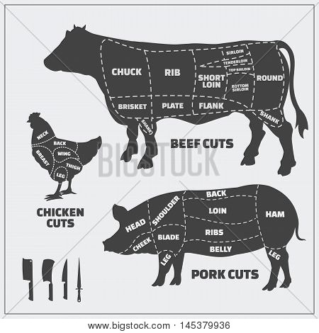 Cuts of beef, pork and chicken. Vector vintage monochrome illustration on a gray background.