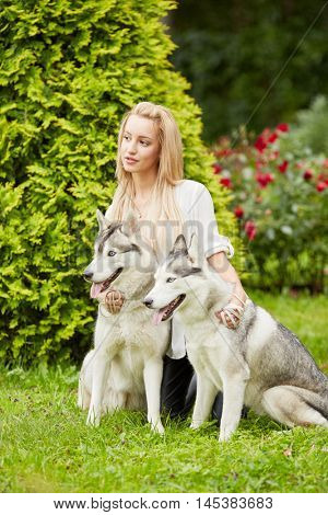 Young blond woman with two dogs Husky on grass in summer park.