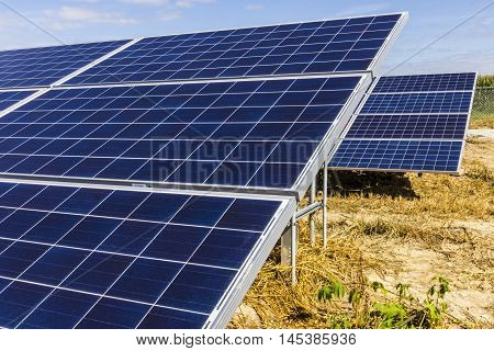 Solar Panel Farm. Corn Fields are Being Converted into Green Energy Areas Using Photovoltaic Cells III