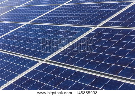 Solar Panel Farm. Corn Fields are Being Converted into Green Energy Areas Using Photovoltaic Cells VI