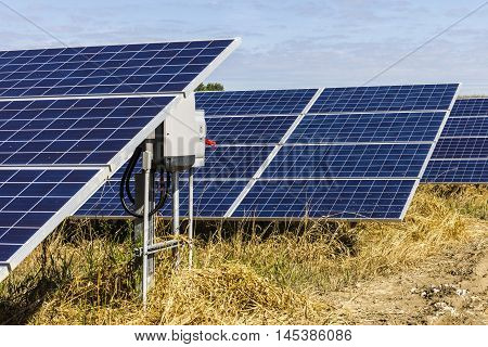 Solar Panel Farm. Corn Fields are Being Converted into Green Energy Areas Using Photovoltaic Cells XI