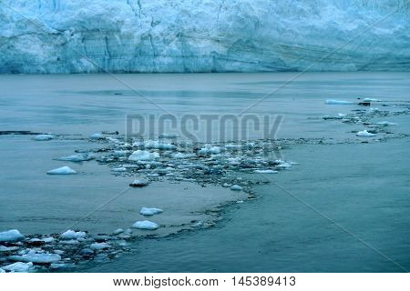 small flaoting icebergs in the waters of tidewater glacier, Alsaka