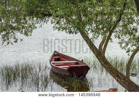 Old Boat In Lake