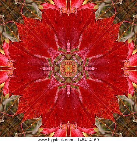 Autumn kaleidoscopic seamless pattern with wreath of red leaves. Red, orange, yellow and brown autumn pattern in the shape of a circle