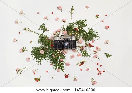 Vintage retro photo camera pink roses the fairy Cotoneaster horizontal red berries and Thuja occidentalis Danica evergreen plants on white background. flat lay top view.