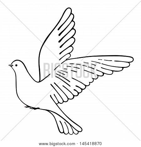 Soaring dove vector illustration isolated on white background