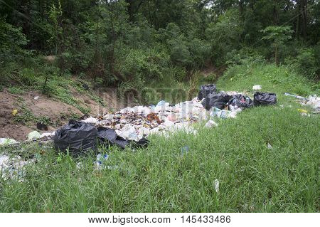 garbage dump among green grass at the woods
